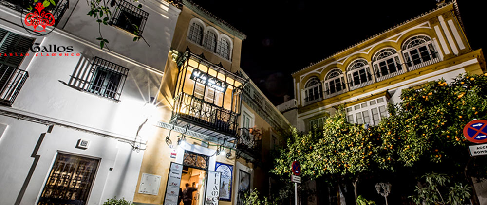 014 Exterior Slider - Accueil Flamenco Sevilla