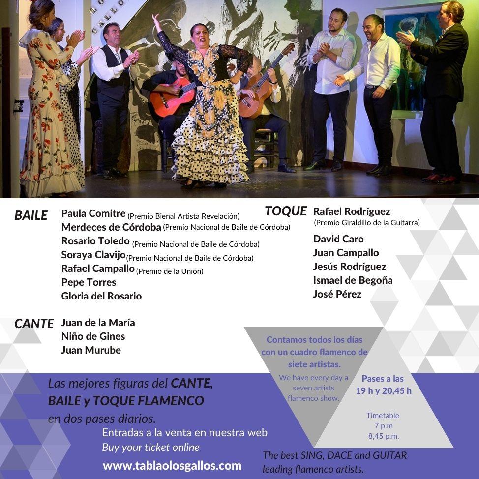 Contamos todos los dias con un cuadro flamenco de siete artistas - Artistes Flamenco Sevilla